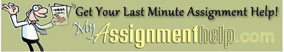 Myassingmenthelp.com legit Company