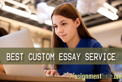 professional custom essay